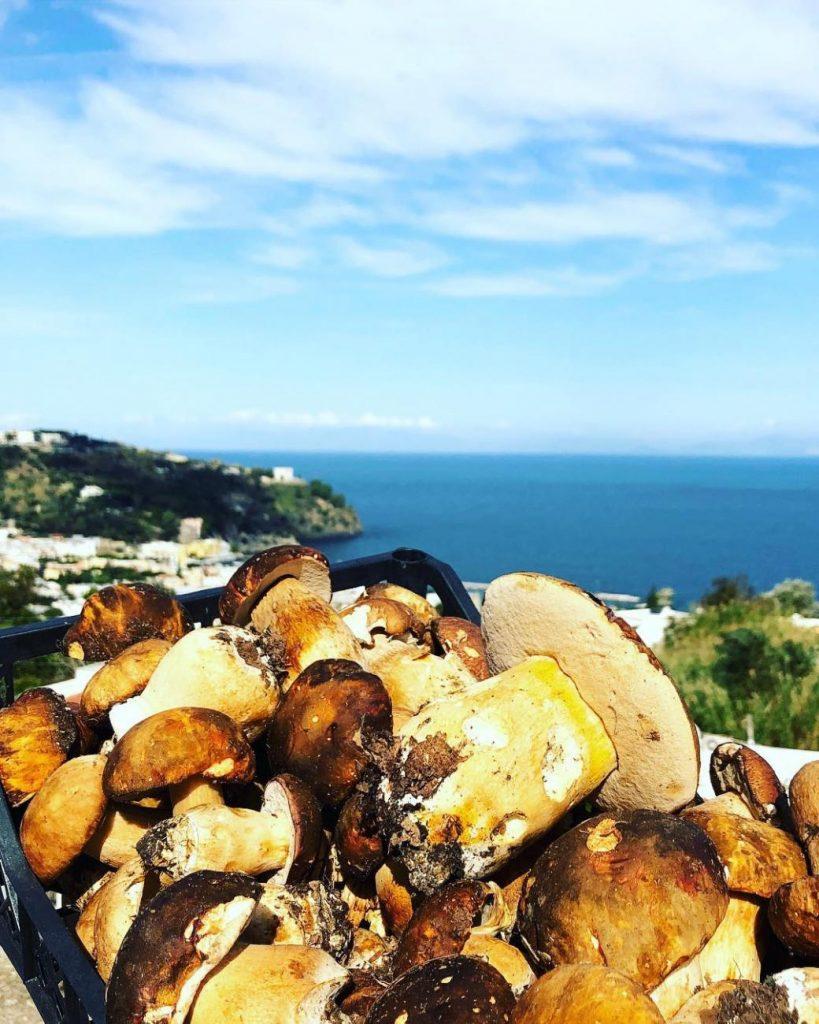 Ristorante Montecorvo Ischia